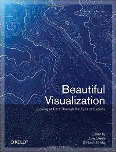 『ビューティフルビジュアライゼーション』 (Beautiful Visualization, Looking at Data Through the Eyes of Experts)、Julie Steele、Noah Iliinsky 編